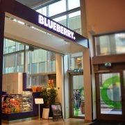 Skyltportal Blueberry Lifestyle